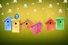 Cartoon-wallpaper-bird-house-colorful-1